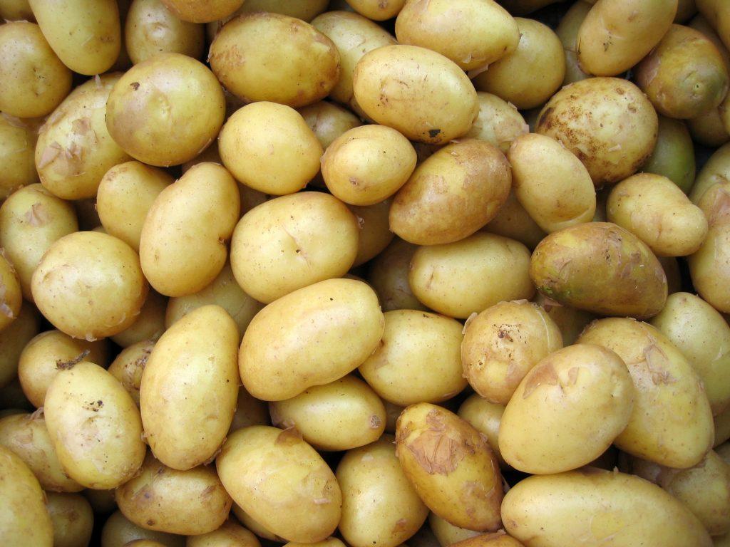 New potatoes nutrition